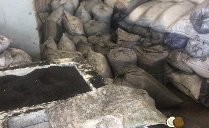 coconut-briquette-raw-material